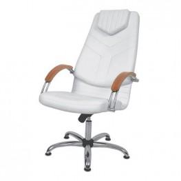 Кресло для педикюра Dino 1 для салона красоты